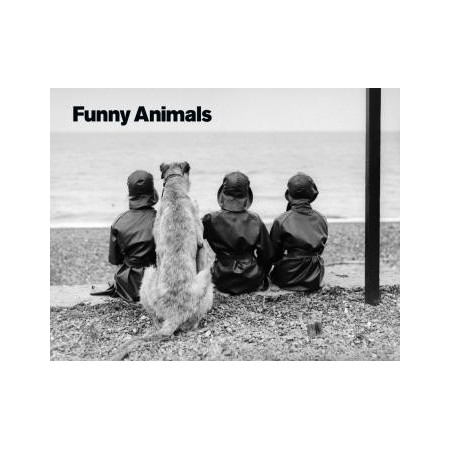 Funny Animals (5 posters)