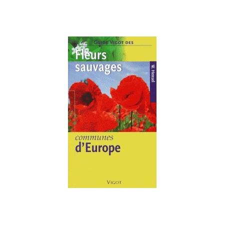 Fleurs sauvages communes d'Europe