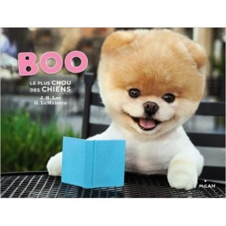 Boo Le plus chou des chiens