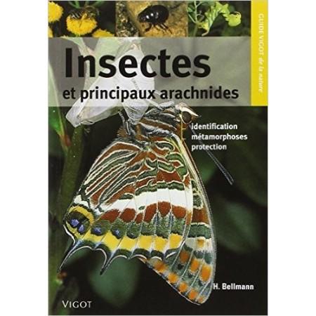 Insectes et principaux arachnides
