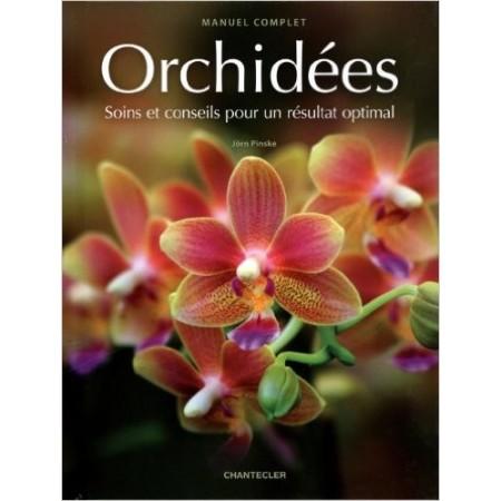 Orchidées - Soins et conseils pour un résultat optimal