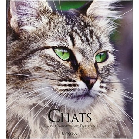 Chats - Races, comportements, éducation