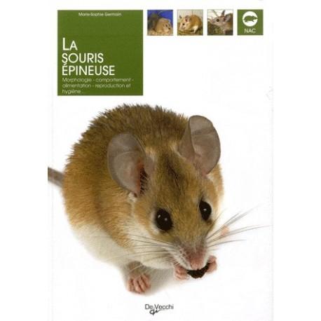 La souris épineuse