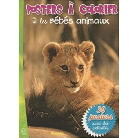 Les bébés animaux - Posters à colorier