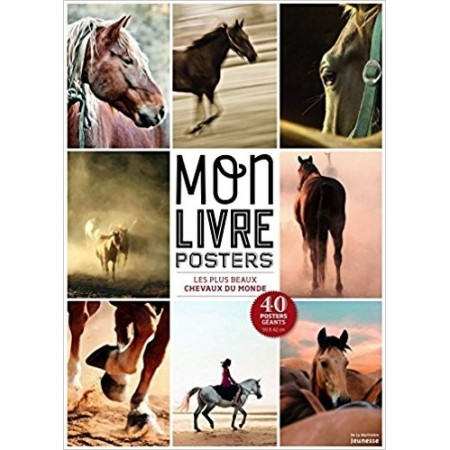Les plus beaux chevaux du monde (40 posters)
