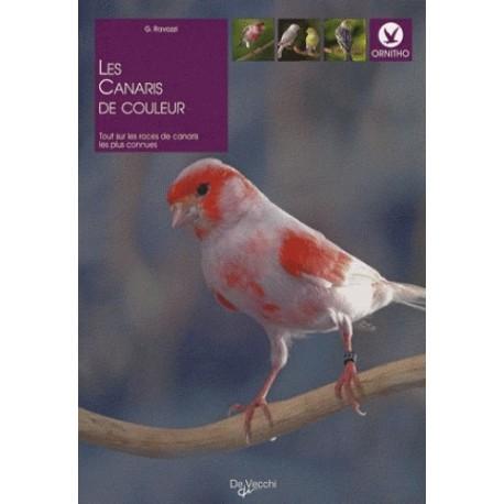 LES CANARIS DE COULEUR