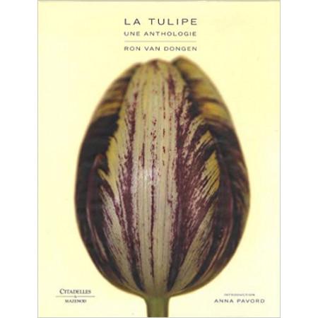 La tulipe une anthologie