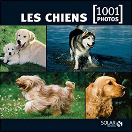 Les chiens en 1001 photos