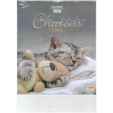 Calendrier 2020 Animaux.Calendrier 2020 Chatons Calins