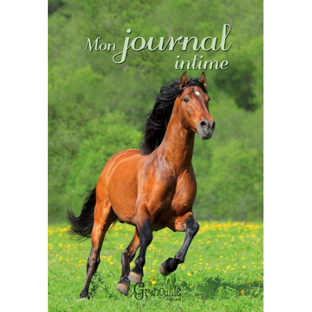 Mon journal intime - Cheval