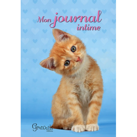 Journal intime chat