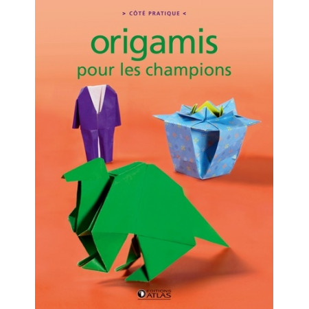 Origamis pour les champions