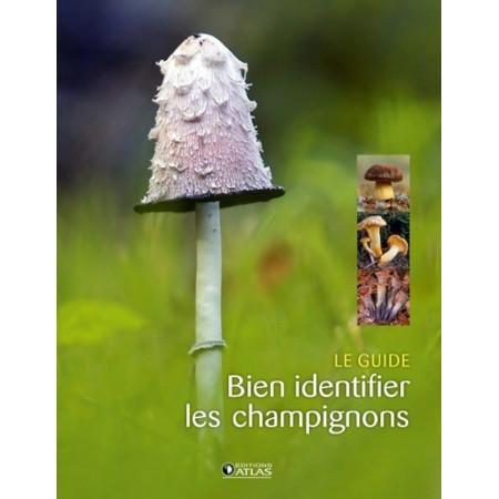 Bien identifier les champignons