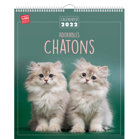 Calendrier 2022 - Adorables chatons