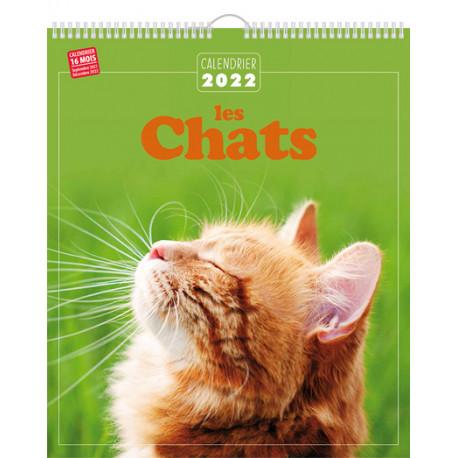 Calendrier 2022 - Les chats
