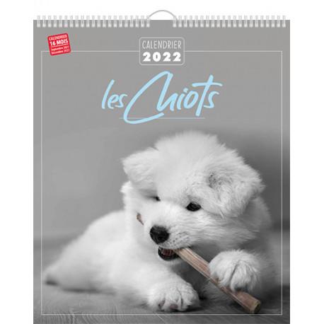 Calendrier 2022 - Les chiots