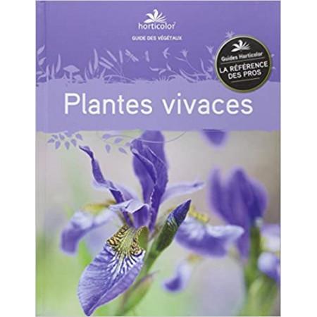 Plantes vivaces (mauve)
