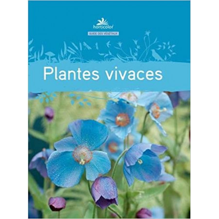 Plantes vivaces (bleu)