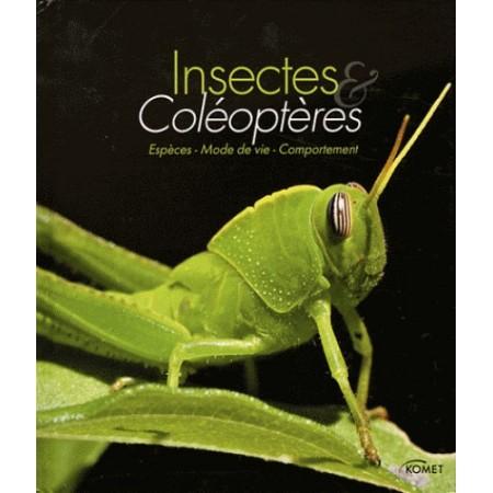 Insectes et coléoptères - Espèces, mode de vie, comportement